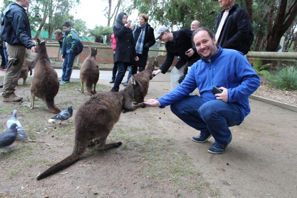 2016-07-15-Reinir-kangaroo-1024x683