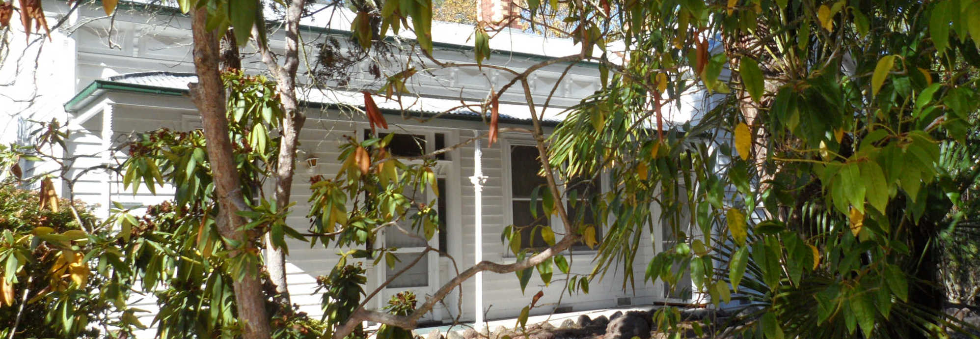 house_bush